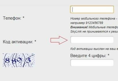 Вывод Adsense на Webmoney при помощи rapida