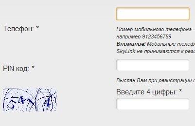 Вывод адсенс на кошелек вебмани с помощью рапиды