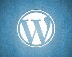 Адаптивный и современный шаблон для wordpress - Grapheme