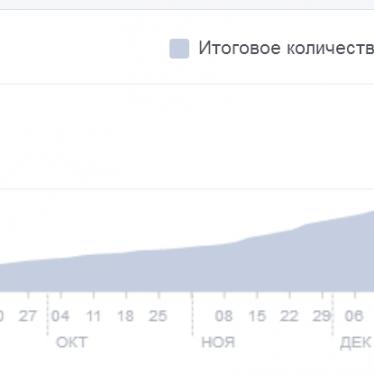 Родион Рудаков: 490 000 фанов в Facebook, оборот 226 000 рублей в месяц